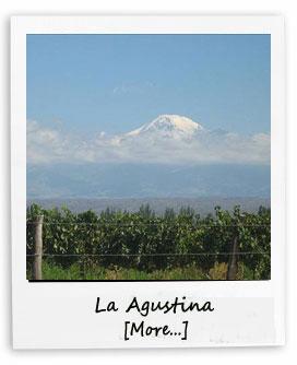La Augustina properties Mendoza