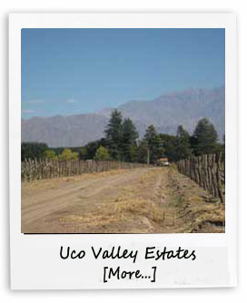 Uco Valley Argentina