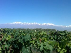 Stunning Andes Vista