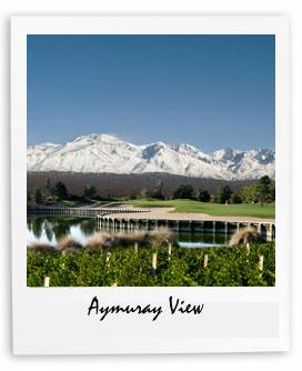Aymuray Vineyard