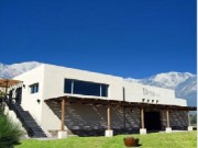 Tupungato Winery with 50 HA of productive vineyards and 5 houses